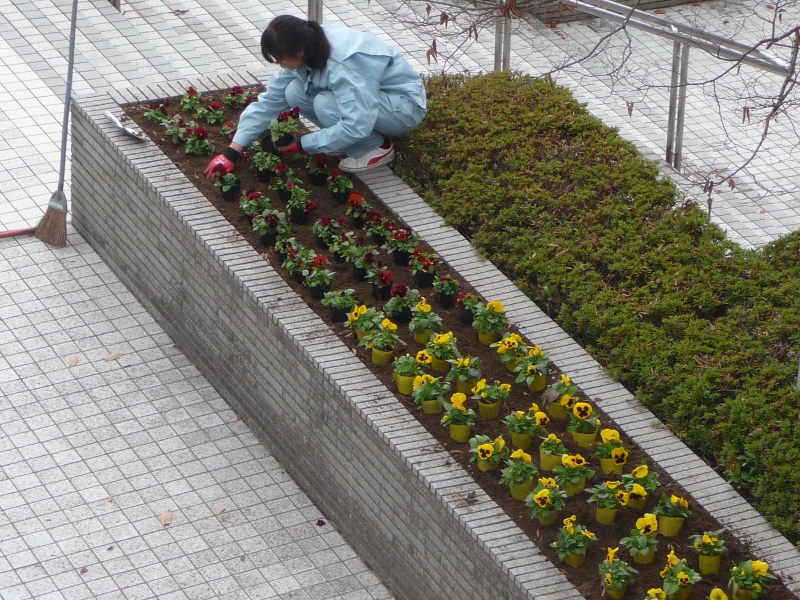 http://www.hitohaku.jp/blog/folder241/P1040752.JPG