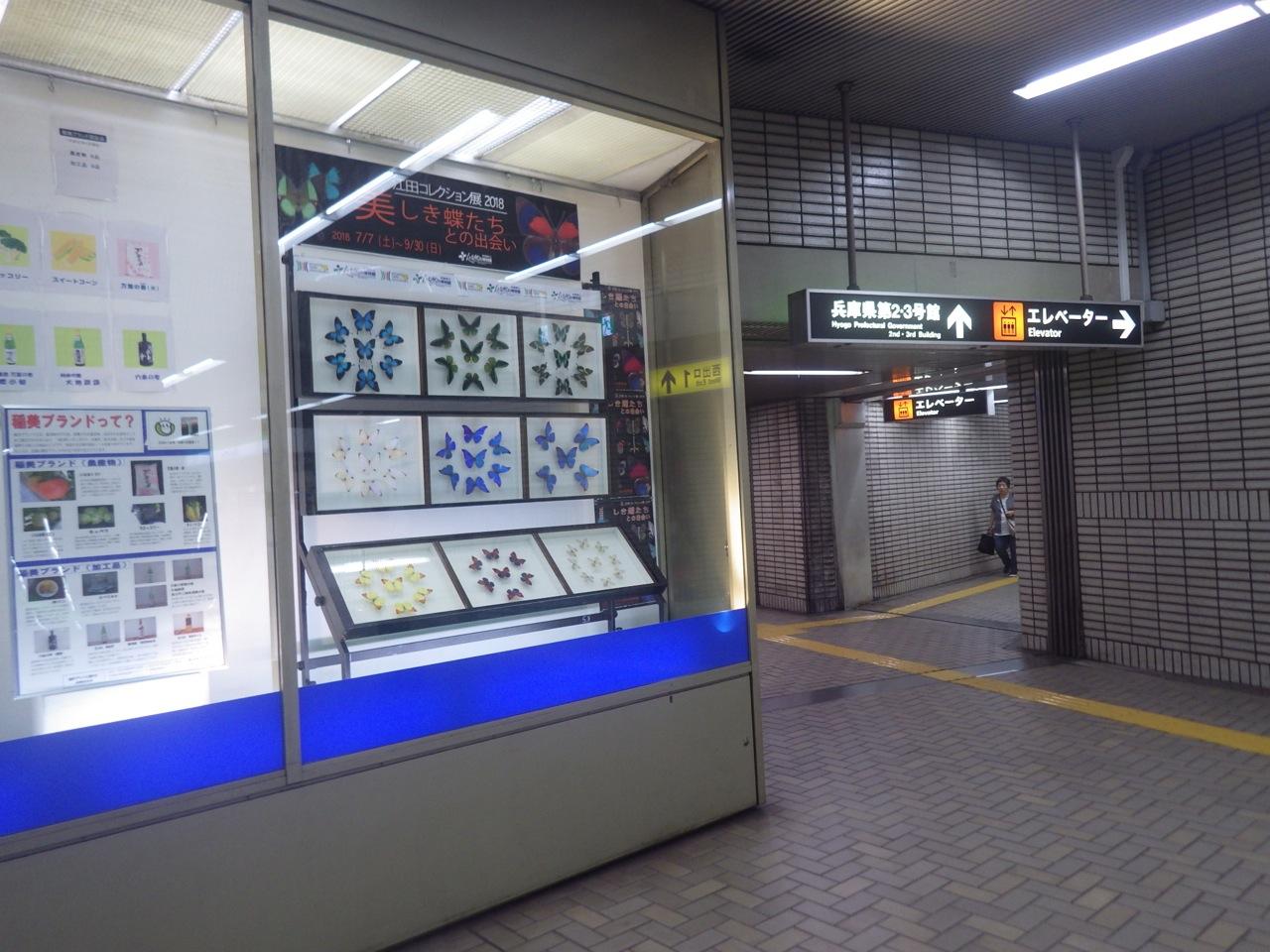 http://www.hitohaku.jp/blog/folder241/exhibit-kenchomaest1.jpg