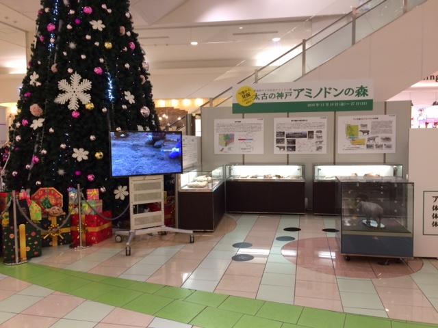 http://www.hitohaku.jp/blog/image2-1.JPG