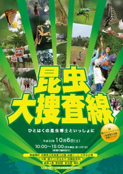 konchuleafA_arimafuji2018.jpg