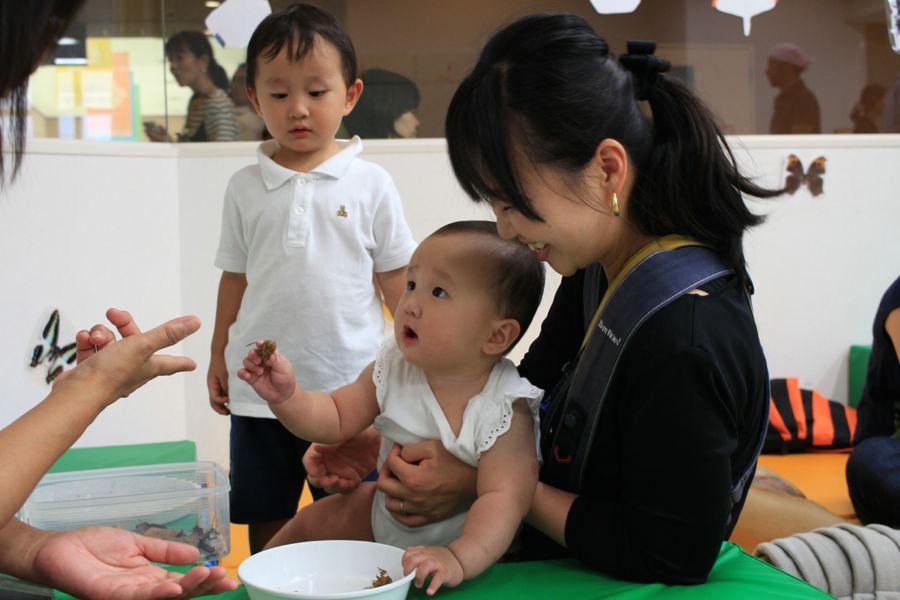 http://www.hitohaku.jp/blog/musimusi2015_2997.jpg
