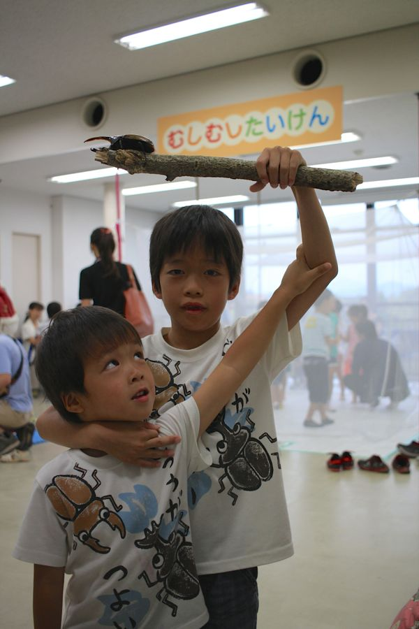 http://www.hitohaku.jp/blog/musimusi2015_3090.jpg