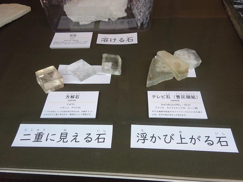 https://www.hitohaku.jp/blog/s-DSC00251.jpg