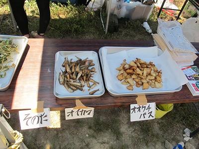 yasou2_hidesaka2012.jpg