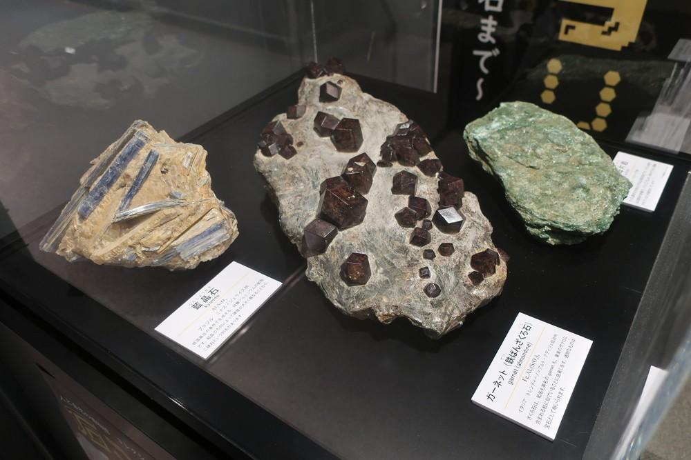 https://www.hitohaku.jp/exhibition/planning/specimen2019-4_1.jpg