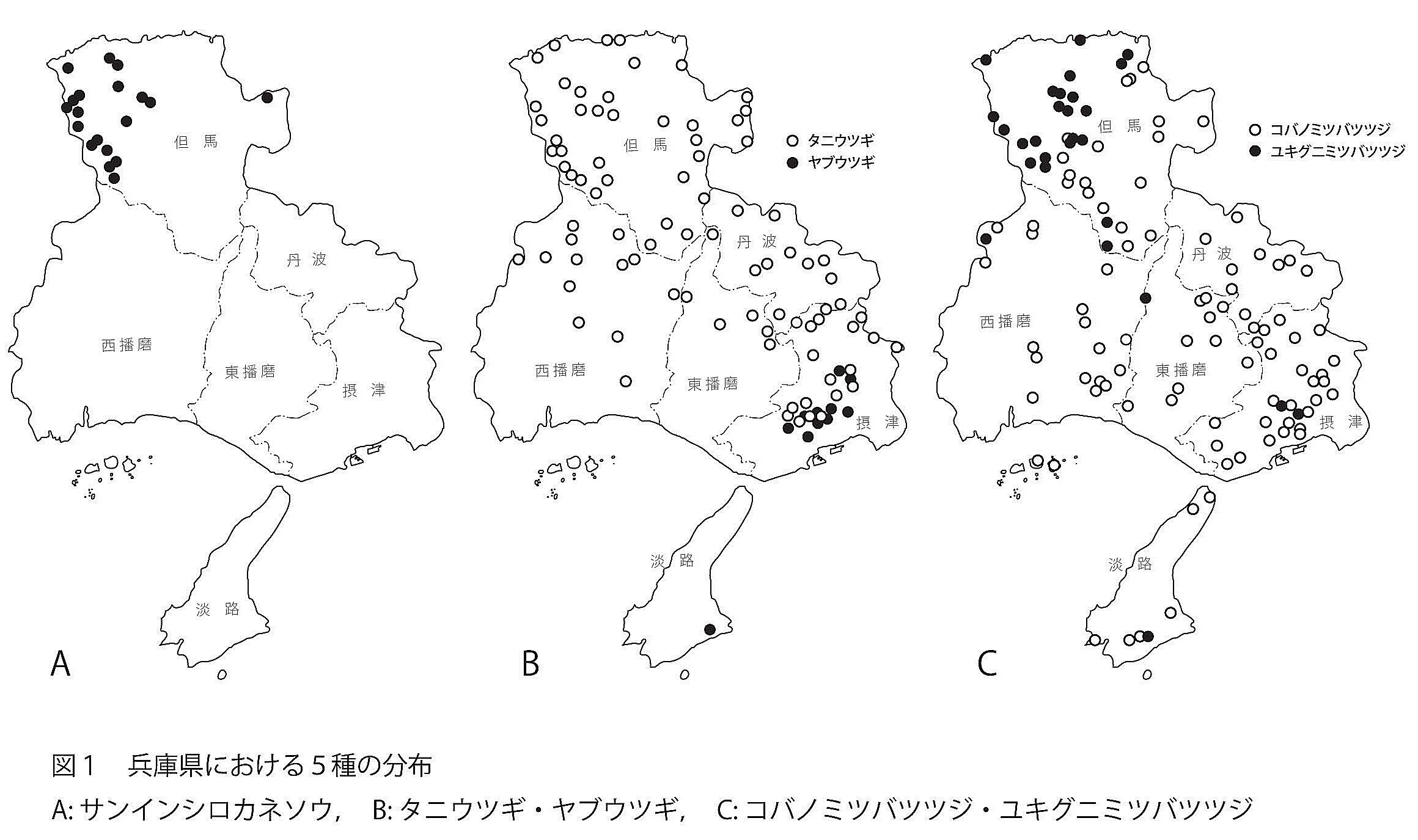 https://www.hitohaku.jp/publication/p-about/30thanniv-plantsofhyogo-fig1n.jpg